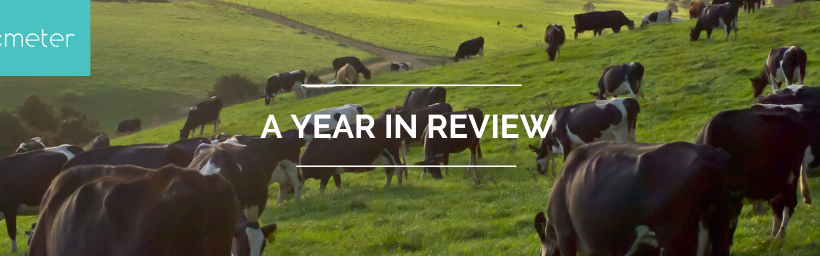 DEMETER – A year in review