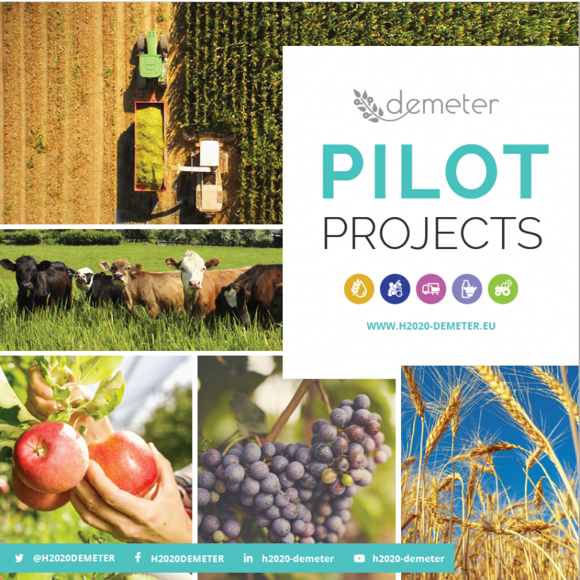 DEMETER Pilot Project Booklet