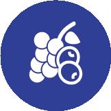 FruitVeg icon