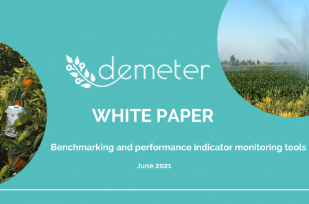 DEMETER White paper DSS tools (1)